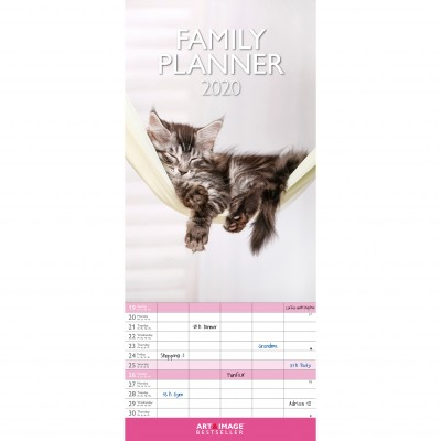 Calendrier familial chats 2020