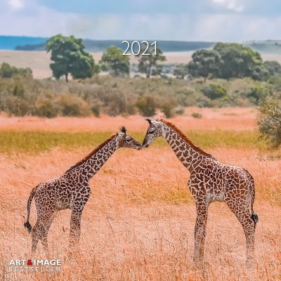 Calendrier 2021 animaux in Love