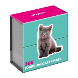Calendrier 365 jours - Chats