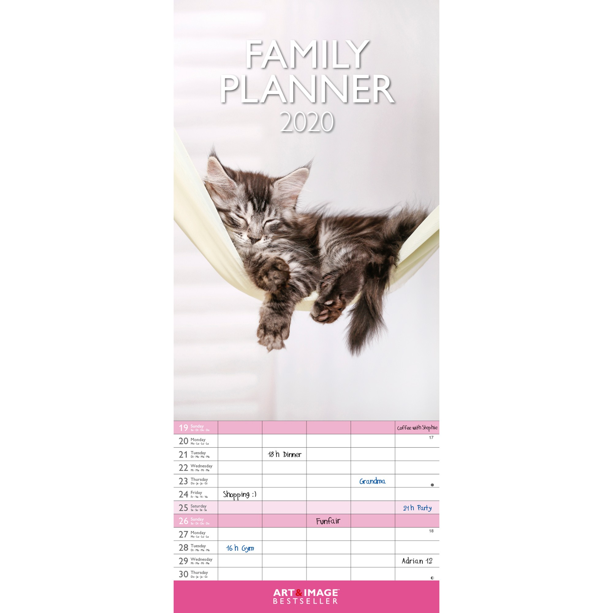 Calendrier Chat 2020.Calendrier Familial Chats 2020 Blancheporte